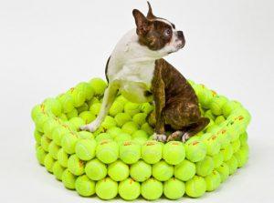 10 idées de créations avec des balles de tennis #1